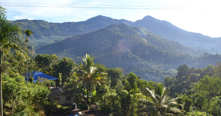 From mountains to coast in Kerala