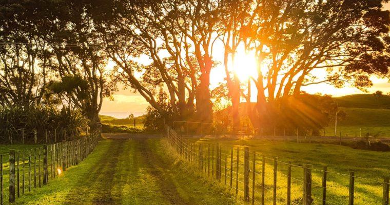 Escape to the country: 5 British rural escapes