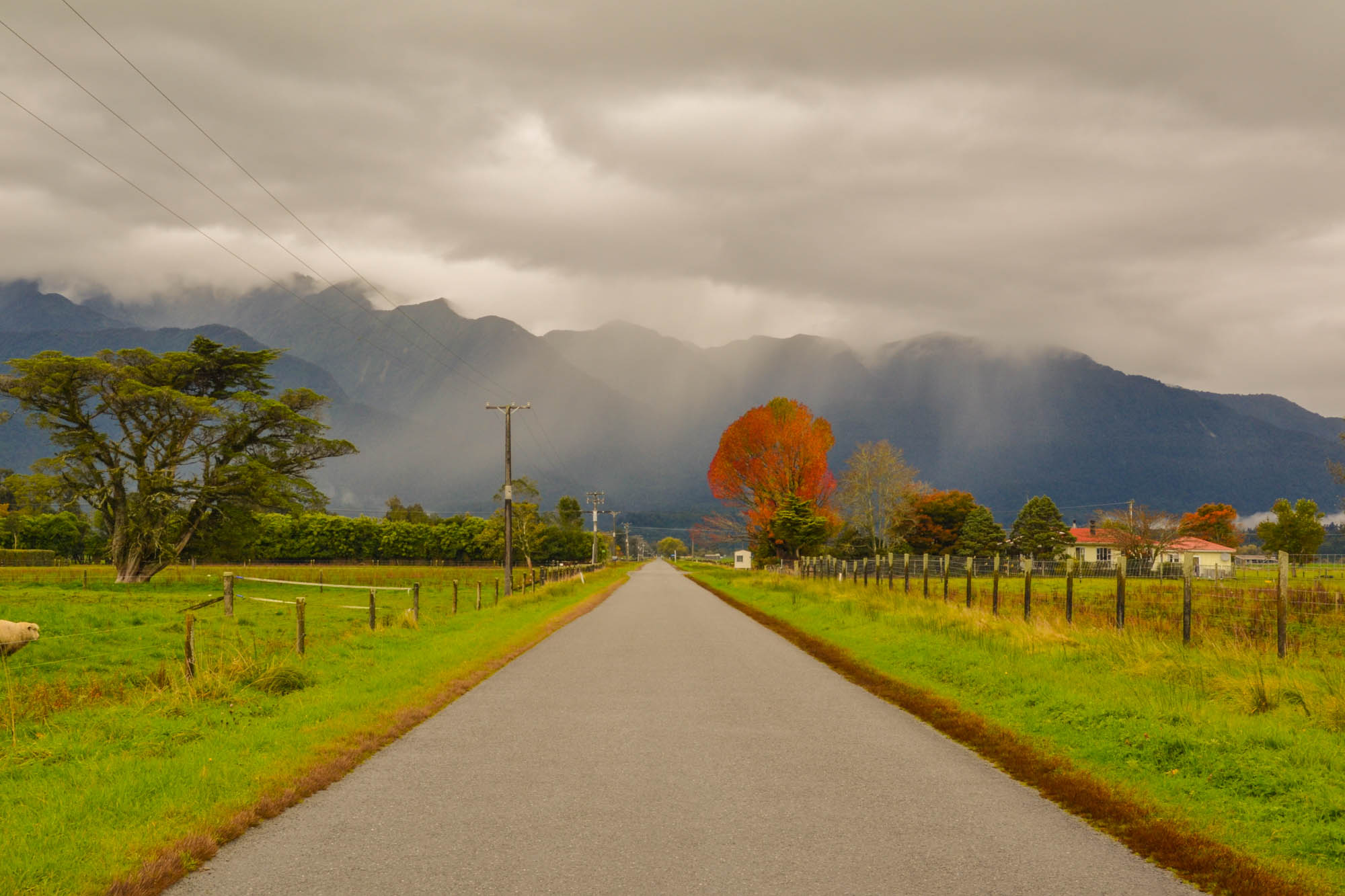 New Zealand road trip c Sarah Gibbons